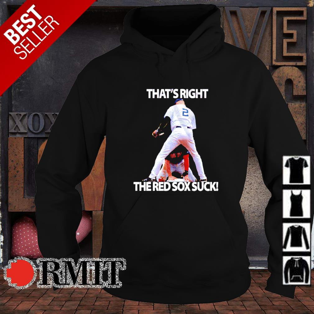 That's right the Red Sox suck s hoodie1