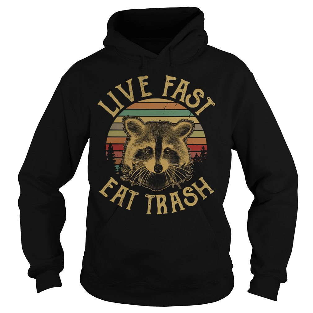 Raccoon Sunset Camping Live fast eat trash Hoodie