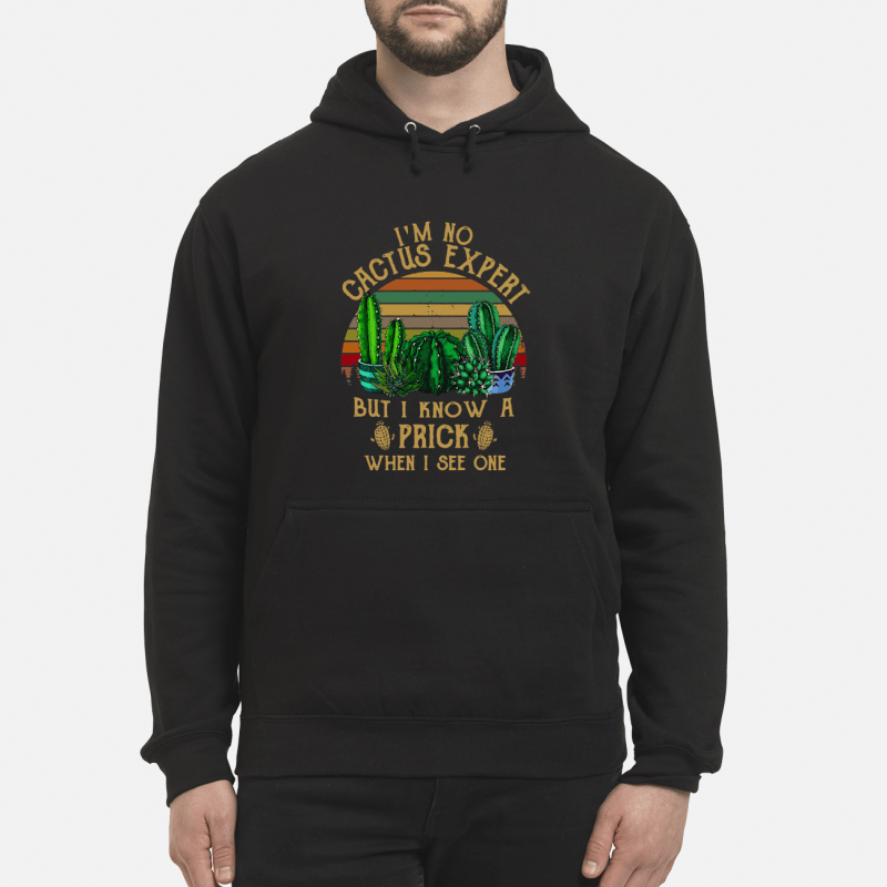 I'M No Cactus Expert But I Know A Prick When I See One Sunset Retro Hoodie