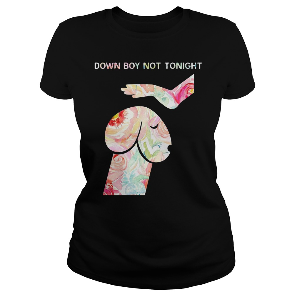 Dog And Hand Down Boy Not Today Ladies Tee