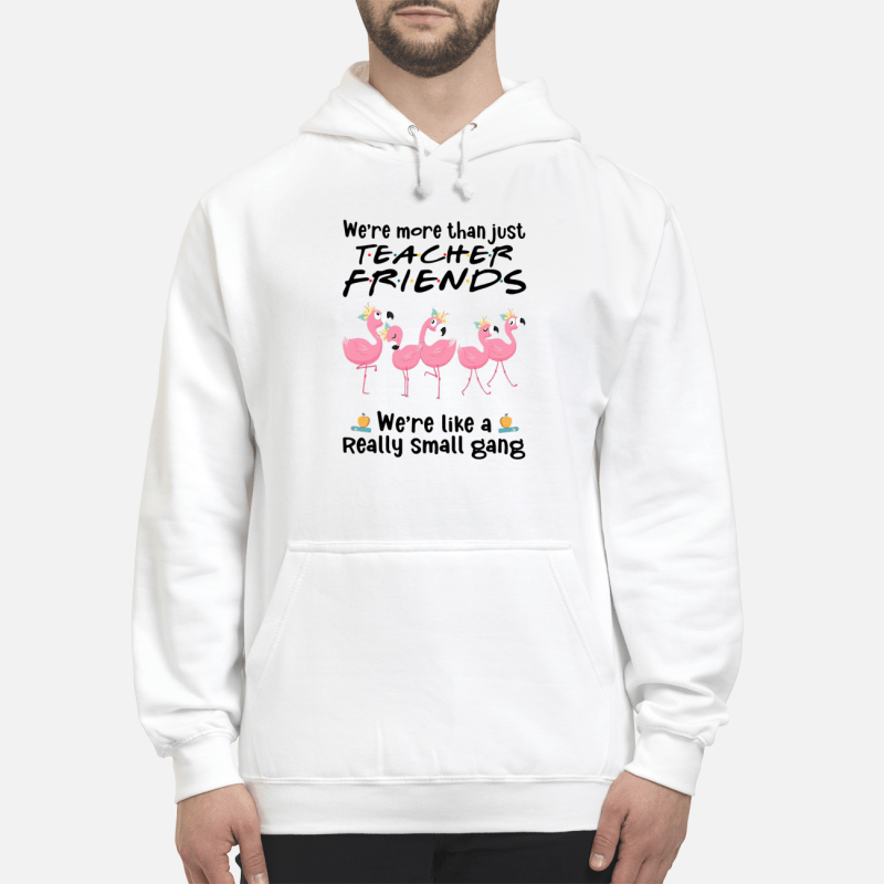 Flamingos We'Re More Than Just Teacher Friends We'Re More Like Really Small Gang Hoodie