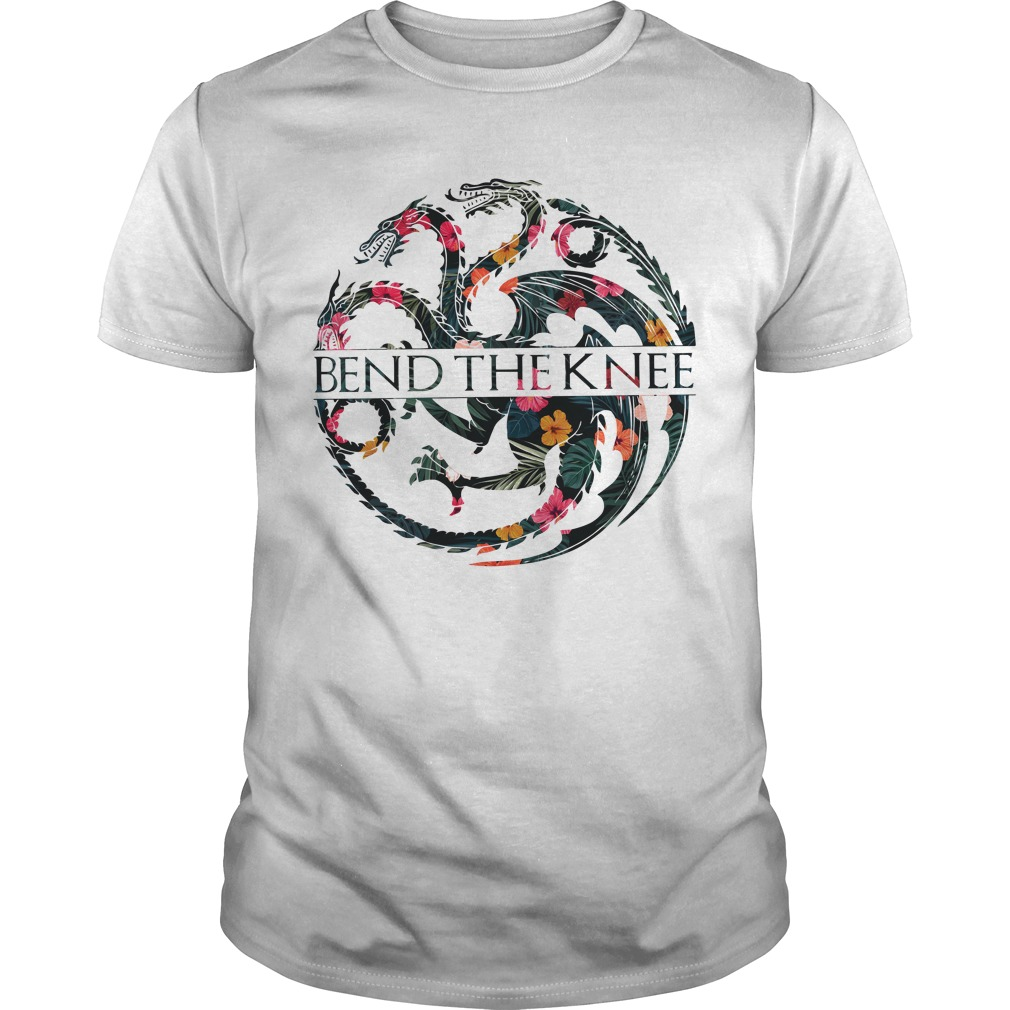 Game Of Thrones Dragons Bend The Knee Guy Tees