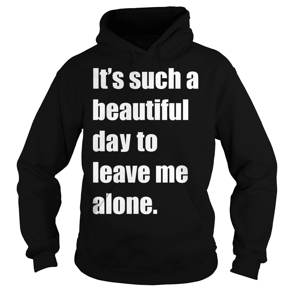 It Such A Beautiful Day To Leave Me Alone Meme Hoodie