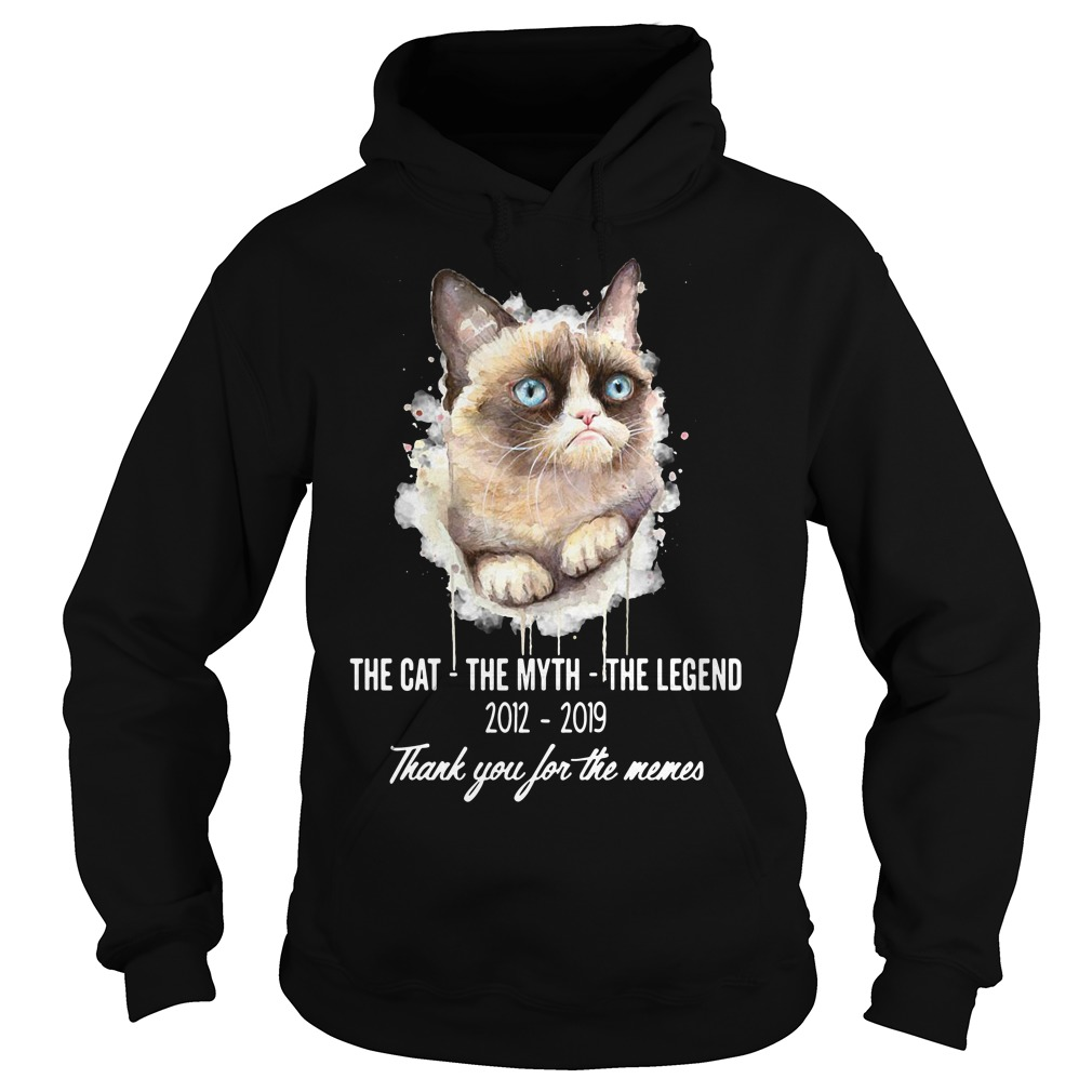 Weird Cat The Cat The Myth The Legend 2012-2019 Thank You For The Meme Hoodie
