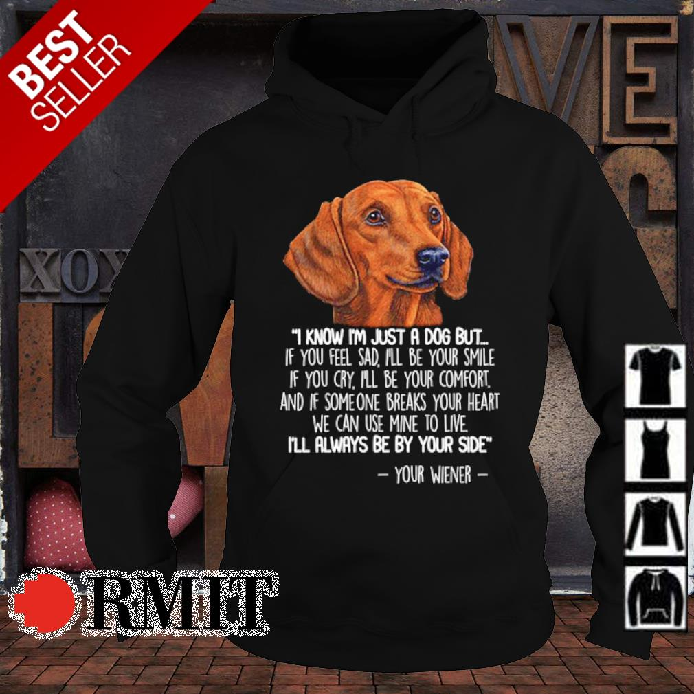 Dachshund I know I'm just a dog but if you feel sad I'll be your smile s hoodie1