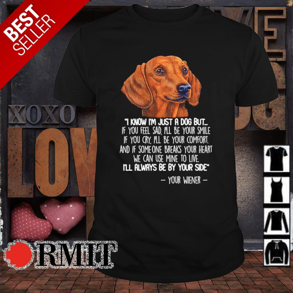 Dachshund I know I'm just a dog but if you feel sad I'll be your smile shirt